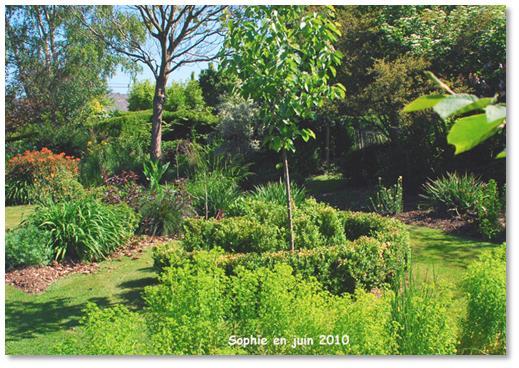 le jardin c 39 est tout les souches d 39 arbres. Black Bedroom Furniture Sets. Home Design Ideas