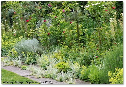Le jardin c 39 est tout des bordures l 39 anglaise for Plantes pour jardin anglais