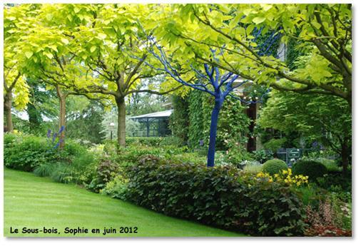 Le jardin c 39 est tout land art au sous bois for Cendre de bois au jardin