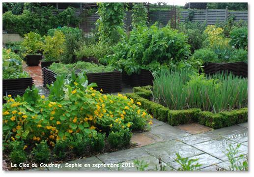 Le jardin c 39 est tout pour remplacer les buis du potager for Jardin potager en anglais