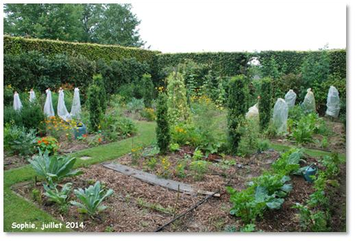 Le jardin c 39 est tout un nouveau potager bien vivant for Le jardin vivant