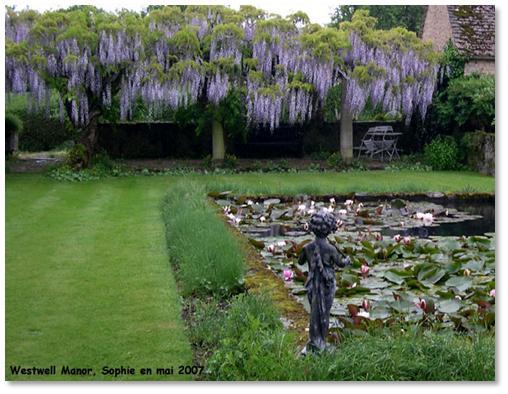 Le jardin c 39 est tout la lumi re des pergolas - Pergola voor glycine ...
