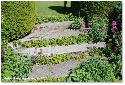Le jardin, c\'est tout !: paysagisme