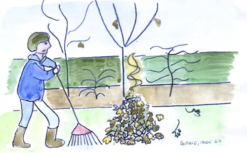 Le jardin c 39 est tout des feuilles mortes - Dessin feuille morte ...