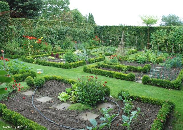 le jardin c 39 est tout ptes aux jeunes courgettes en fleur. Black Bedroom Furniture Sets. Home Design Ideas