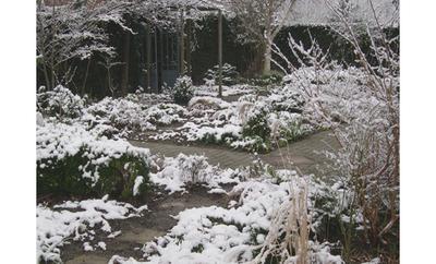 Jardin_blanc_0207